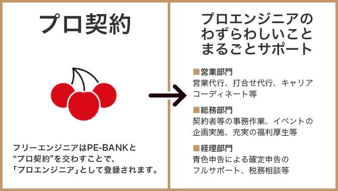 PE-BANKのプロ契約