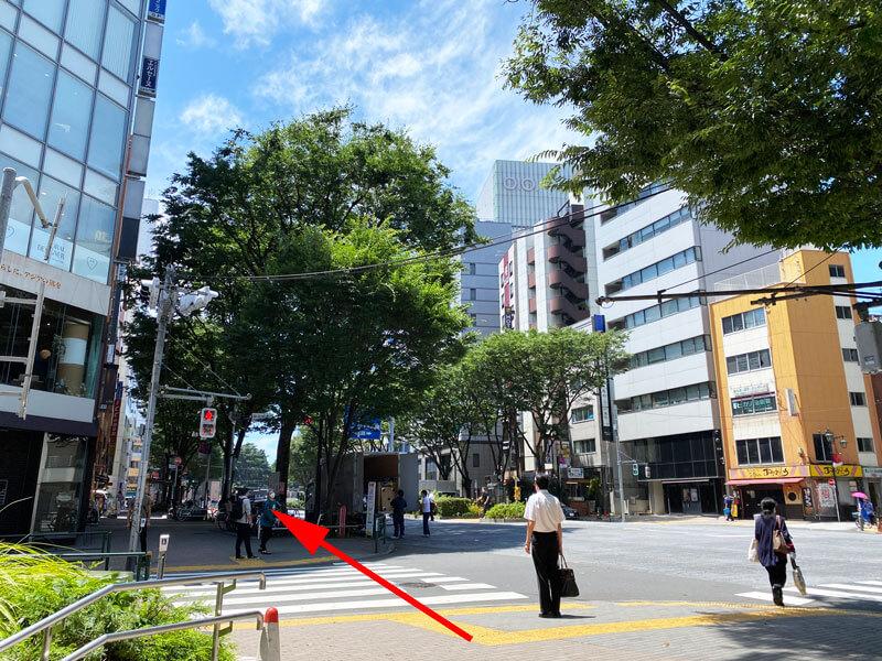 新宿柳通り交差点の写真